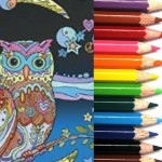 craft-warehouse-event-coloring-book