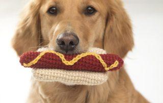 Crochet a Dog Toy