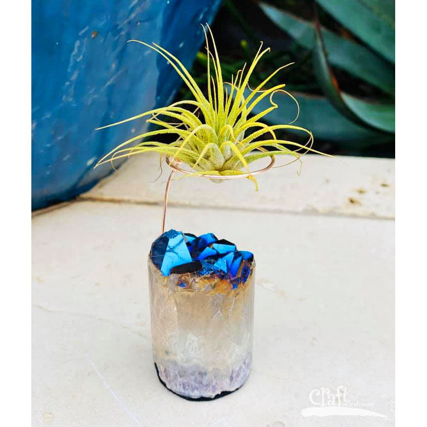 Make this: Crystal Air Plant Display